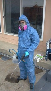 Mold Removal San Francisco Technician