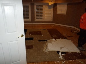 Ceiling Damage Restoration in Progress